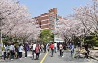 韩国留学:不要盲目选择学费低、奖学金高的学校