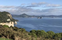 2019年留学新西兰:新西兰留学贵不贵