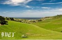 新西兰留学:不参加高考留学新西兰费用