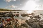 留学新西兰:新西兰的留学签证的材料清单