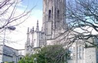 选择大学不再犹豫!奥克兰大学八大学院优势和特色介绍