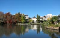 北上广VS新西兰,相同收入的情况下,生活质量究竟差多少?