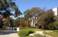 澳洲留学生的住宿问题如何解决?看这里!