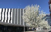 澳洲国立大学国际研究生录取工作紧张进行中........