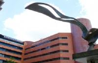 香港理工大学市场营销专业