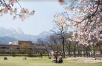 吐血大整理!最全的韩国留学一年全部费用!