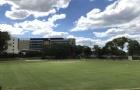 大二转学顺利拿下悉尼大学offer