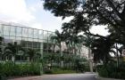 新加坡留学选这些专业,就业求职更容易!