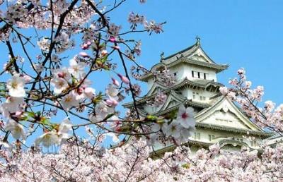 日本政府发布放宽留学生就业政策