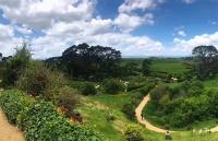 留学新西兰:新西兰留学的签证的时间申请介绍
