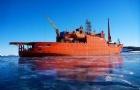 澳大利亚建新南极破冰船,塔大海事校友任项目经理