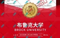 W同学雅思7.0英语功底好顺利拿到布鲁克大学offer