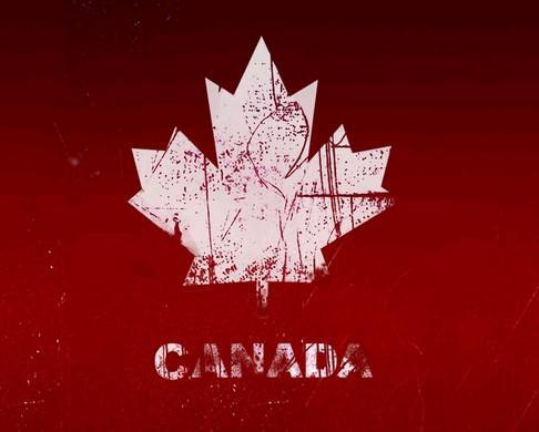 看看加拿大各大名校雅思成绩要求,你可以达标吗?