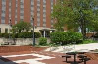 高效沟通全力以赴,低GPA成功逆袭俄亥俄州立大学