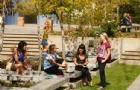 留学新西兰:新西兰传播学硕士专业排名