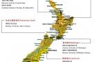 高考后新西兰留学:新西兰留学怎么择校?