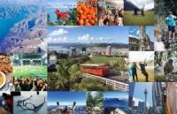新西兰留学指南!你要的信息都在这里!