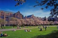 完美规划,低托福SAT成功录取华盛顿大学