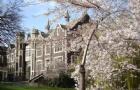 去新西蘭留學去哪個預科院校呢?坎特伯雷大學預科相當好