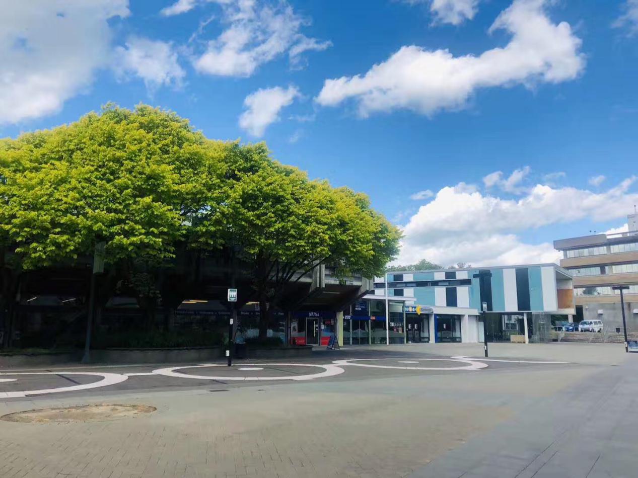 新西兰留学|2019年拿着高考成绩,解锁世界名校