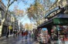 西班牙留学怎样选择适合自己的专业