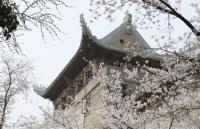 贝博体育竞猜小白看过来,日本早稻田大学申请攻略在此!