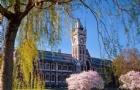 奥塔哥大学的职业会计硕士奖学金重磅来袭!