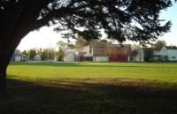 新西兰留学东部理工学院不可错过的奖学金在这里!