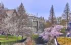 奥塔哥大学最新录取标准和介绍抢先看!
