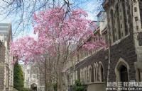 2020年2月入学奥塔哥大学金融硕士有奖学金发放哦!