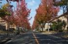 日本广岛大学排名一览