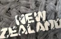 新西兰留学:新西兰GD学士后文凭移民专业介绍