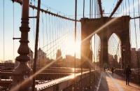 美国本科留学:综合排名和专业排名,哪一个更重要?
