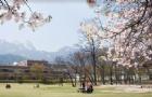 叮~您有一份赴韩留学年均费用清单待查收!
