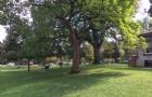 多伦多大学真的很水吗?你一旦知道这些后就会打消这个想法!