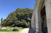 不只是知名大学:澳大利亚纽卡斯尔大学你需要知道这些!