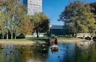 谢菲尔德大学为什么这么好?