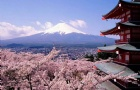 日本留学申请的几大要点,你都知道吗?