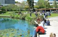新西兰怀卡托大学商务管理硕士课程申请及优势