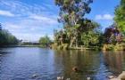 新西兰留学:准备去新西兰读硕的学生留学方案