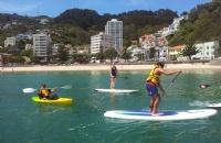 新西兰留学:新西兰留学安全小常识