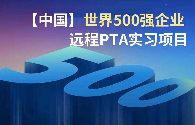 【中国】世界500强企业 远程PTA实习项目