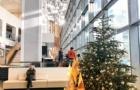 德国大学含金量高,名牌大学多,吸引着全球的留学生