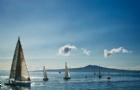 新西蘭留學:按照曆史和學術劃分後的新西蘭八大