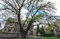 新西兰留学:奥塔哥大学奖学金种类情况介绍