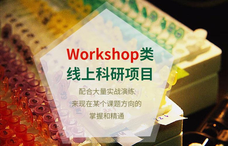 Workshop类线上科研项目