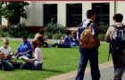 新西兰留学读研语言专业tesol要求
