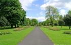爱尔兰留学就业六大途径大盘点