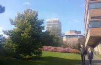 美国西南的顶尖研究型大学――埃克塞特大学