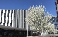 你知道澳洲国立大学的成就都有哪些吗?